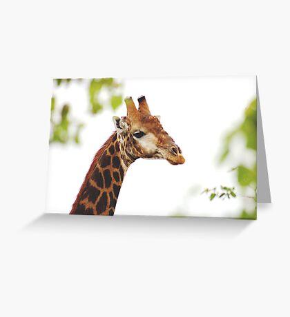 THE MATURED GIRAFFE Greeting Card