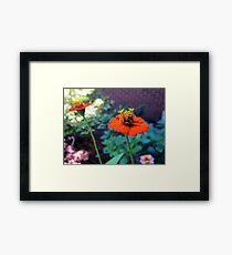 The Little Things are Orange Flowers Framed Print