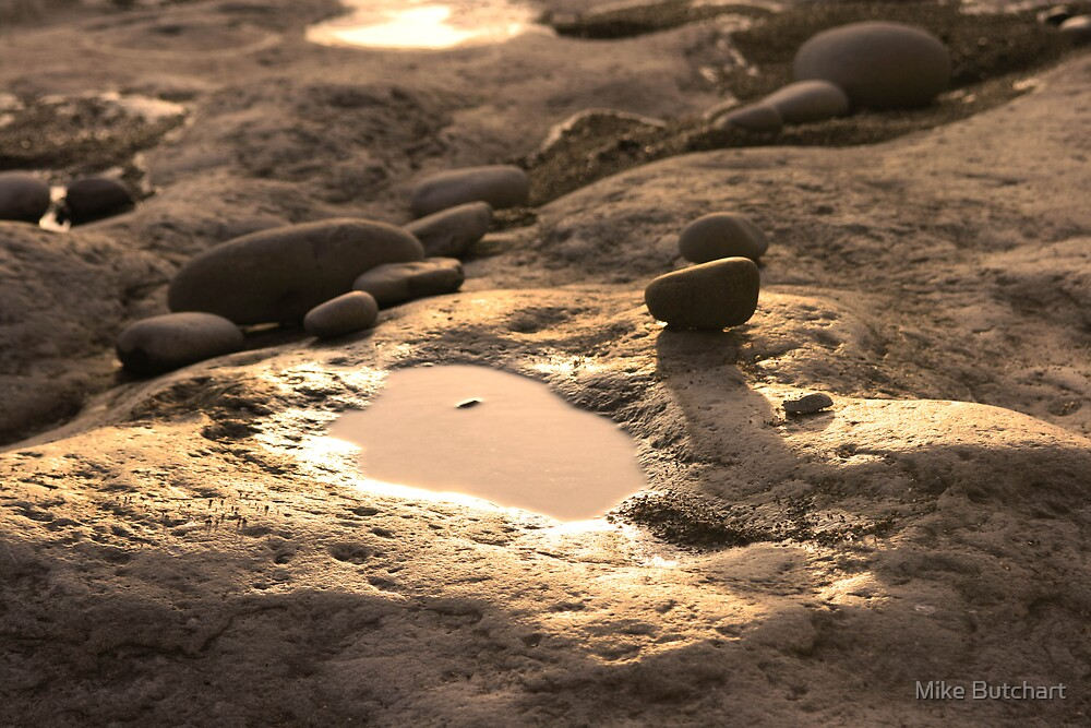 Lonely Puddle by Mike Butchart