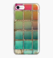 Color Chart Multi iPhone Case/Skin