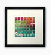 Color Chart Multi Framed Print