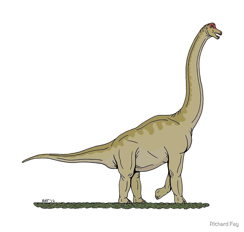 Brachiosaurus by Richard Fay