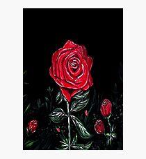 Night Rose Photographic Print