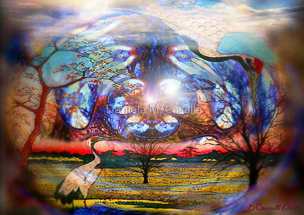 Through a magician's eye by Daniela M. Casalla