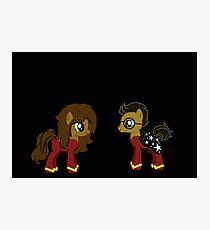 Harry and Hermionie Ponies. Photographic Print