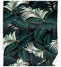TROPICAL JUNGLE - Night Poster