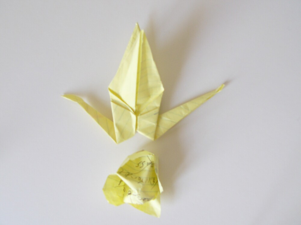 Yellow Crane by ducnly