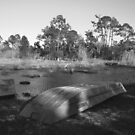 Fishing Hole by Bree Tipton