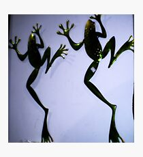 Frog plaques on wall of gift shop Photographic Print