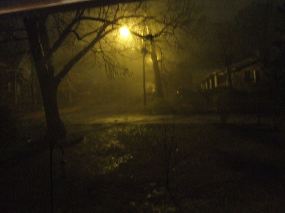 Night Scene During a Heavy Rain by Ray1945