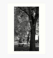 Empty Autumn Art Print