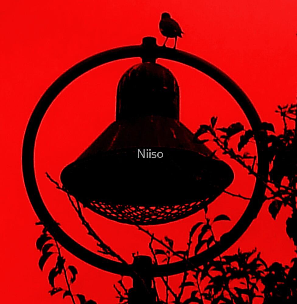 BIRD SITS IN SHADOW  by Niiso