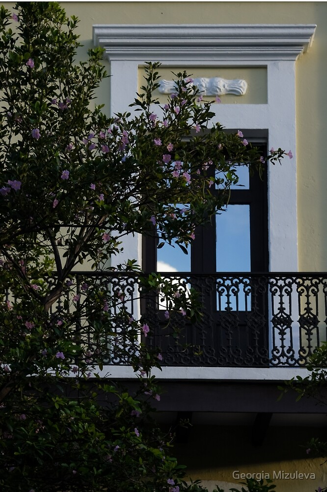 Elegant Tropical Balcony The Beautiful Colonial Architecture Of