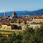 Impressions Of Florence - a View From the Top by Georgia Mizuleva