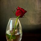 Mother's day, rose in glass by gameover