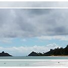 View From Kailua Beach by WeeZie