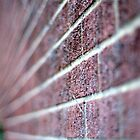 The wall. Perspective and DOF. by Billlee