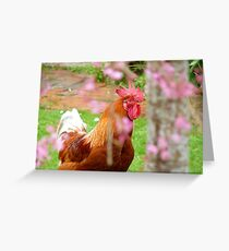 There's  Girls, There's Women And Then There's Ladies -  Rooster - NZ Greeting Card