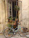 Window in Arles by Cathy Jones