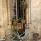 Window in Arles by Cathy Jones