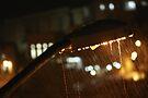 Street flashlight in the rain by Moshe Cohen