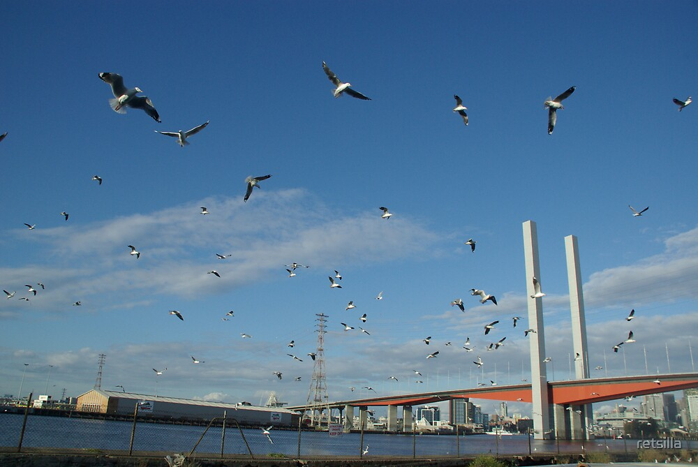Gull-Posts by retsilla