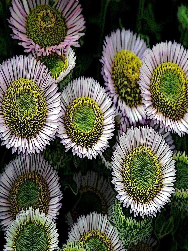 FloralFantasia 03 by oliverart