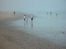 Texel Island beach by Moshe Cohen