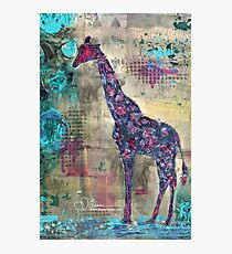majestic series: giraffe having a berry Photographic Print