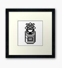 Pokestatue Framed Print