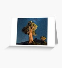 Olmsted Point Greeting Card