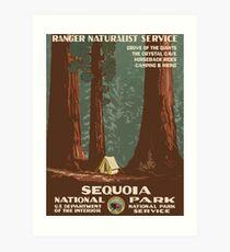 Mammutbaum-Nationalpark-Weinlese-Reise-Plakat Kunstdruck