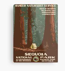 Sequoia National Park Vintage Travel Poster Metal Print