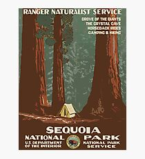 Sequoia National Park Vintage Travel Poster Photographic Print