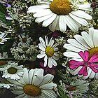 FloralFantasia 08 by Charles Oliver