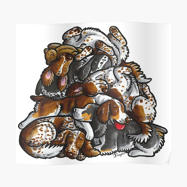 Sleeping pile of English Springer Spaniels Poster