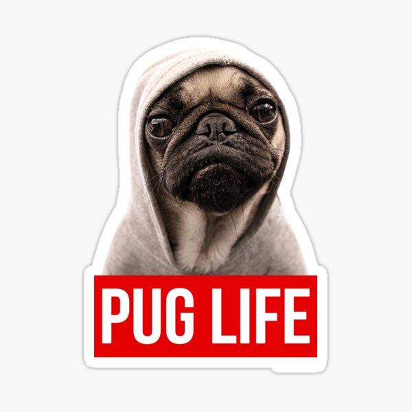 Original Pug Life Pug Sticker