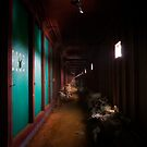 Tunnel Vision by David Librach - DL Photography -