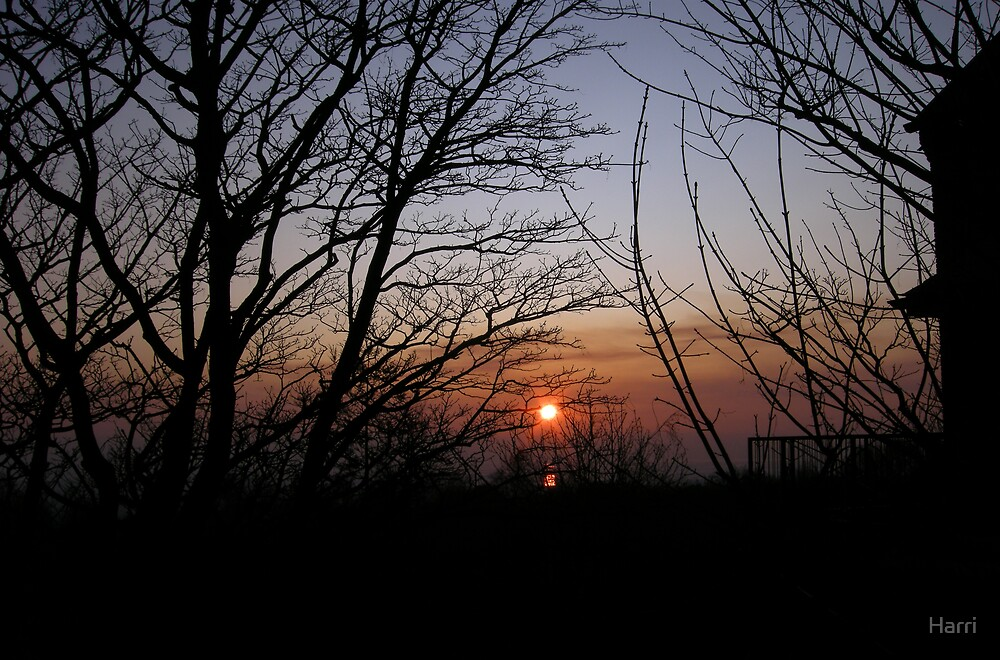 Sunset over the Dee Estuary by Harri