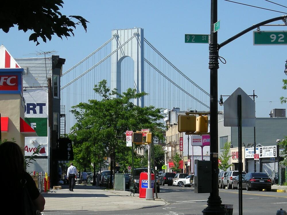 Bay Ridge, Brooklyn by Diget6255