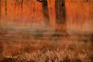 """""""Early Mornin' in Georgia""""... prints and products by Bob Hall©"""