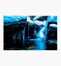 Birch Creek 2014 Photographic Print