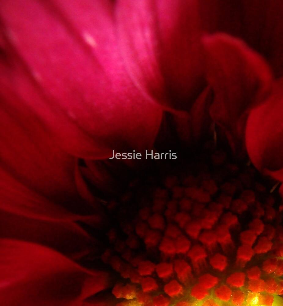 Deep by Jessie Harris