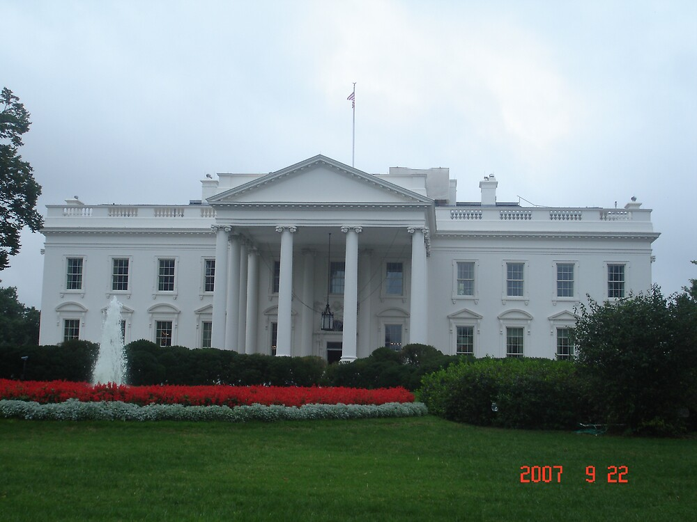White House by reddy
