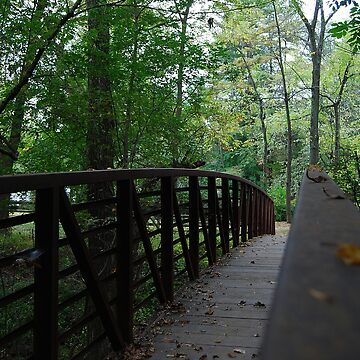 Early Fall Crossing by AnnaRose