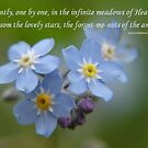 The Forget-Me-Nots of the Angels Greeting Card Quote by taiche