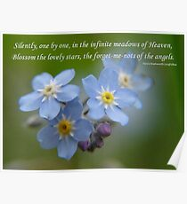 The Forget-Me-Nots of the Angels Greeting Card Quote Poster