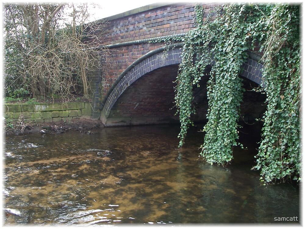 bridge by samcatt