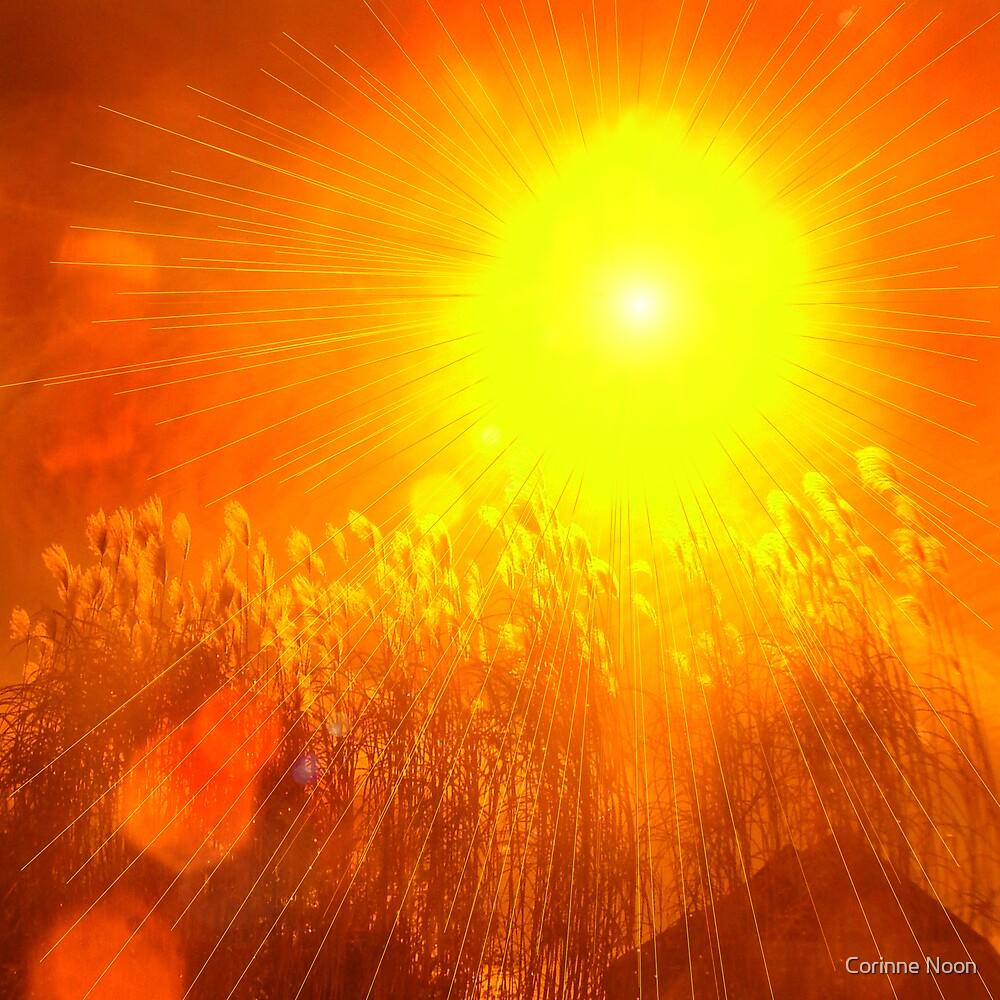 """Sun """" BURST"""" by Corinne Noon"""