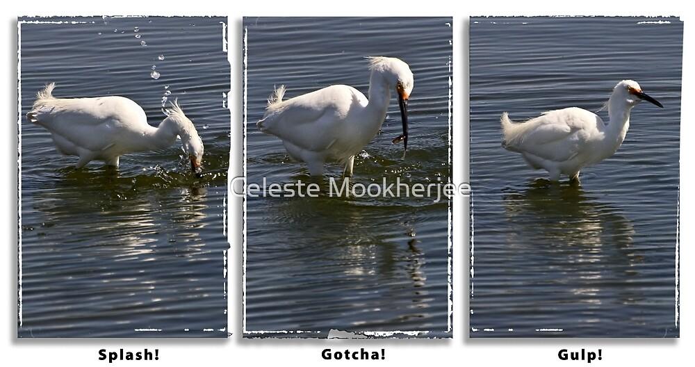 Reiher Triptychon von Celeste Mookherjee